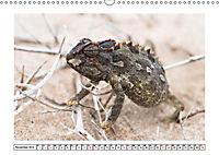 Wildlife - Tiere in Namibia (Wandkalender 2019 DIN A3 quer) - Produktdetailbild 11