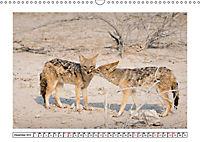 Wildlife - Tiere in Namibia (Wandkalender 2019 DIN A3 quer) - Produktdetailbild 12