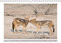 Wildlife - Tiere in Namibia (Wandkalender 2019 DIN A4 quer) - Produktdetailbild 12