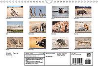 Wildlife - Tiere in Namibia (Wandkalender 2019 DIN A4 quer) - Produktdetailbild 13