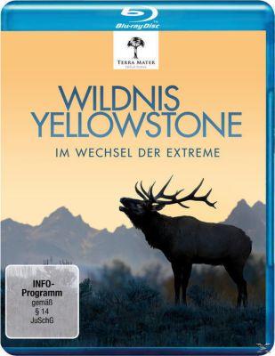 Wildnis Yellowstone-im Wechsel der Extreme