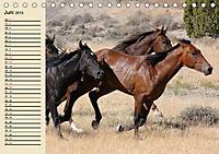Wildpferde. Frei wie der Wind (Tischkalender 2019 DIN A5 quer) - Produktdetailbild 6