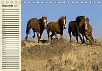 Wildpferde. Frei wie der Wind (Tischkalender 2019 DIN A5 quer) - Produktdetailbild 12