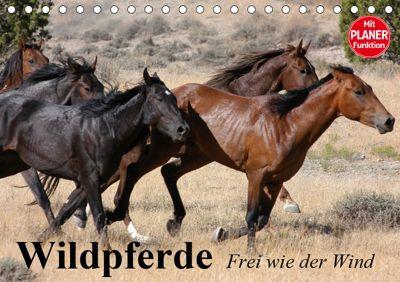Wildpferde. Frei wie der Wind (Tischkalender 2019 DIN A5 quer), Elisabeth Stanzer