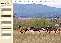 Wildpferde. Frei wie der Wind (Tischkalender 2019 DIN A5 quer) - Produktdetailbild 2