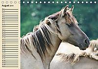 Wildpferde. Frei wie der Wind (Tischkalender 2019 DIN A5 quer) - Produktdetailbild 8