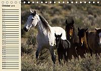 Wildpferde. Frei wie der Wind (Tischkalender 2019 DIN A5 quer) - Produktdetailbild 10