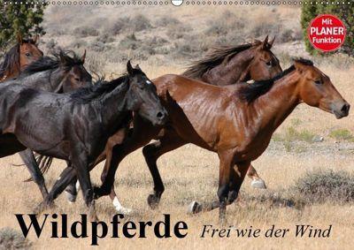 Wildpferde. Frei wie der Wind (Wandkalender 2019 DIN A2 quer), Elisabeth Stanzer