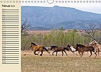 Wildpferde. Frei wie der Wind (Wandkalender 2019 DIN A4 quer) - Produktdetailbild 2