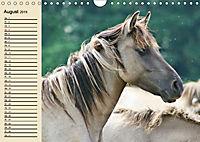 Wildpferde. Frei wie der Wind (Wandkalender 2019 DIN A4 quer) - Produktdetailbild 8