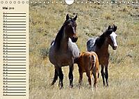 Wildpferde. Frei wie der Wind (Wandkalender 2019 DIN A4 quer) - Produktdetailbild 5