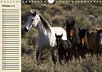 Wildpferde. Frei wie der Wind (Wandkalender 2019 DIN A4 quer) - Produktdetailbild 10