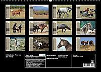 Wildpferde. Frei wie der Wind (Wandkalender 2019 DIN A2 quer) - Produktdetailbild 13