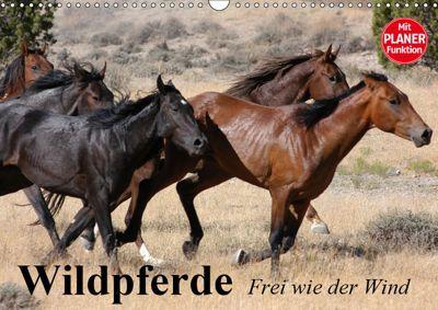 Wildpferde. Frei wie der Wind (Wandkalender 2019 DIN A3 quer), Elisabeth Stanzer