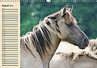 Wildpferde. Frei wie der Wind (Wandkalender 2019 DIN A3 quer) - Produktdetailbild 8