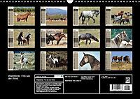 Wildpferde. Frei wie der Wind (Wandkalender 2019 DIN A3 quer) - Produktdetailbild 13