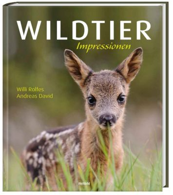 Wildtier Impressionen, Andreas David