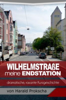 Wilhelmstrasse meine Endstation, Harald Prokscha