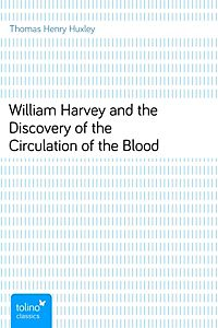 A bloodied tradition essay