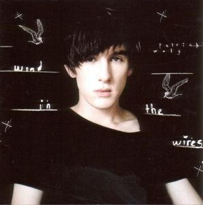 Wind In The Wires, Patrick Wolf