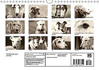 Windhunde eye-catcher (Wandkalender 2019 DIN A4 quer) - Produktdetailbild 13