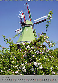 Windmühlen in Norddeutschland (Wandkalender 2019 DIN A2 hoch) - Produktdetailbild 4