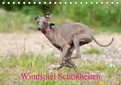 Windspiel Schönheiten (Tischkalender 2019 DIN A5 quer), Angelika Joswig