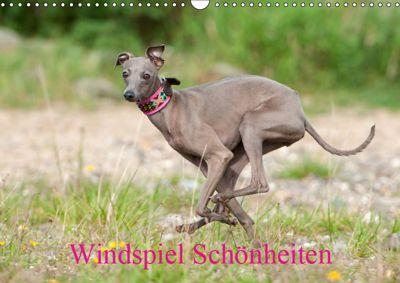 Windspiel Schönheiten (Wandkalender 2019 DIN A3 quer), Angelika Joswig