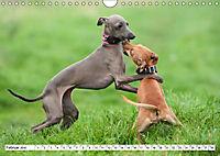 Windspiel Schönheiten (Wandkalender 2019 DIN A4 quer) - Produktdetailbild 11