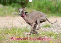 Windspiel Schönheiten (Wandkalender 2019 DIN A4 quer), Angelika Joswig
