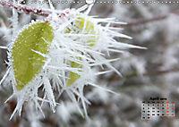 Winter in Maidenhead (Wall Calendar 2019 DIN A3 Landscape) - Produktdetailbild 4