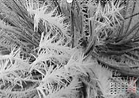 Winter in Maidenhead (Wall Calendar 2019 DIN A3 Landscape) - Produktdetailbild 12