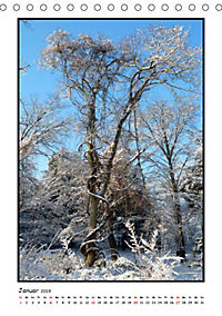 Winter-Poesie (Tischkalender 2019 DIN A5 hoch) - Produktdetailbild 1