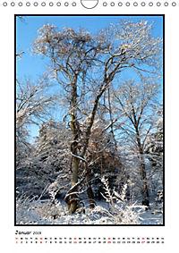 Winter-Poesie (Wandkalender 2019 DIN A4 hoch) - Produktdetailbild 1