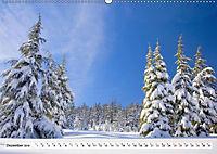 Winter. Zauberhafte Schneelandschaften (Wandkalender 2019 DIN A2 quer) - Produktdetailbild 12