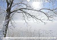 Winter. Zauberhafte Schneelandschaften (Wandkalender 2019 DIN A4 quer) - Produktdetailbild 3