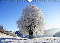 Winter. Zauberhafte Schneelandschaften (Wandkalender 2019 DIN A4 quer) - Produktdetailbild 11