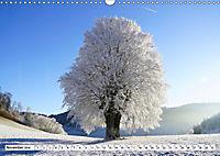 Winter. Zauberhafte Schneelandschaften (Wandkalender 2019 DIN A3 quer) - Produktdetailbild 11