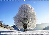 Winter. Zauberhafte Schneelandschaften (Wandkalender 2019 DIN A2 quer) - Produktdetailbild 11