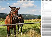 Winterberg Impressionen (Wandkalender 2019 DIN A2 quer) - Produktdetailbild 5