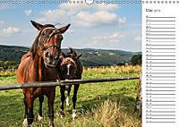 Winterberg Impressionen (Wandkalender 2019 DIN A3 quer) - Produktdetailbild 5