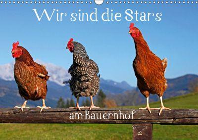 Wir sind die Stars am Bauernhof (Wandkalender 2019 DIN A3 quer), Christa Kramer