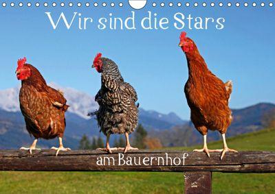 Wir sind die Stars am Bauernhof (Wandkalender 2019 DIN A4 quer), Christa Kramer