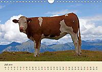Wir sind die Stars am Bauernhof (Wandkalender 2019 DIN A4 quer) - Produktdetailbild 7