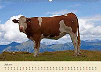 Wir sind die Stars am Bauernhof (Wandkalender 2019 DIN A2 quer) - Produktdetailbild 7