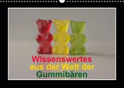 Wissenswertes aus der Welt der Gummibären (Wandkalender 2019 DIN A3 quer), Hans Seidl