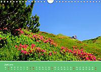 Wo das Allgäu am schönsten ist (Wandkalender 2019 DIN A4 quer) - Produktdetailbild 6