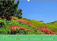 Wo das Allgäu am schönsten ist (Wandkalender 2019 DIN A3 quer) - Produktdetailbild 6