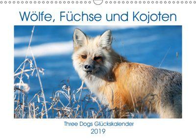 Wölfe, Füchse und Kojoten (Wandkalender 2019 DIN A3 quer), Jana Malin