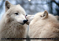 Wölfe, Füchse und Kojoten (Wandkalender 2019 DIN A3 quer) - Produktdetailbild 2